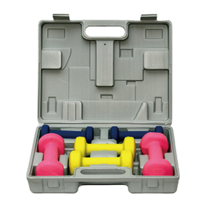 China Promotional Cheap 6/12KG Dumbbell Set with Box Vigor - DBS-D-004