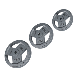 China Vigor Gym Accessories Grey Hammertone Plate PL-I-103